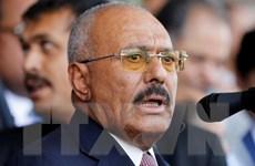 Yemen xác nhận cựu Tổng thống Saleh bị phiến quân Houthi sát hại