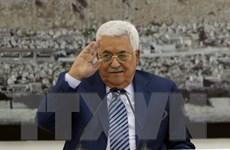 Palesine kêu gọi Nga, Pháp và Giáo Hoàng can thiệp vấn đề Jerusalem