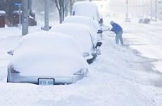 Nhiệt độ xuống âm 50 độ C, Canada phải hủy các sự kiện ngoài trời