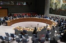 Hội đồng Bảo an tránh lên án chiến dịch của Thổ Nhĩ Kỳ tại Syria