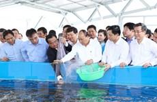 Thủ tướng dự khởi công khu công nghệ cao phát triển tôm Bạc Liêu
