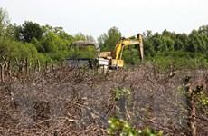 Cà Mau đề nghị xử lý chủ tịch xã tự ý cho dân phá rừng để nuôi sò