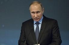 Tổng thống Nga Putin chia buồn về vụ rơi máy bay hành khách An-148
