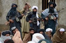 Taliban tuyên bố đàm phán để chấm dứt chiến tranh ở Afghanistan