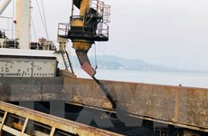TKV rót 32.000 tấn than trong ngày đầu năm mới Mậu Tuất 2018