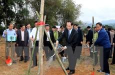 Chủ tịch nước: Gìn giữ môi trường sống bền vững cho muôn đời