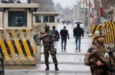Đánh bom liều chết gần khu ngoại giao đoàn tại thủ đô Afghanistan