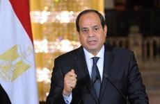 Bầu cử tổng thống Ai Cập: Chính thức khởi động chiến dịch tranh cử