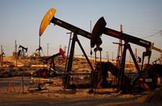 Giá dầu châu Á hạ do lo ngại về đà tăng sản lượng dầu của Mỹ