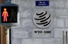 Giữa chỉ trích tăng thuế nhôm, thép, Mỹ đòi cải cách WTO