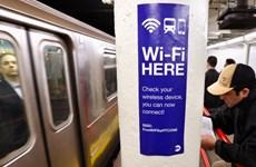 New York công bố kế hoạch cung cấp công cụ an ninh mạng miễn phí