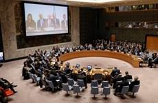 Hội đồng Bảo an thảo luận về cáo buộc sử dụng vũ khí học tại Syria