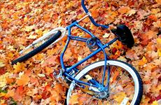 Một bệnh nhi nhiễm vi khuẩn tụ cầu vàng sau cú ngã xe đạp