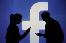 Nghị sỹ Đức cảnh báo về thế thống trị của mạng xã hội Facebook