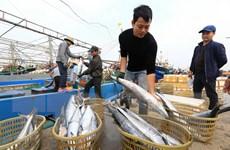 Sản lượng khai thác, nuôi trồng thủy sản 4 tháng đầu năm tăng