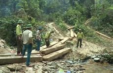 Vụ phá rừng quy mô lớn ở Quảng Bình: Kỷ luật 5 cán bộ kiểm lâm