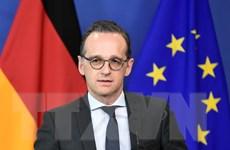 Chính phủ Đức muốn tiếp tục giúp đỡ các công ty làm ăn với Iran