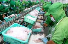 Xuất khẩu cá tra sang Trung Quốc tiếp tục tăng mạnh