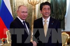 Lãnh đạo Nga, Nhật Bản nhất trí hướng tới hiệp định hòa bình
