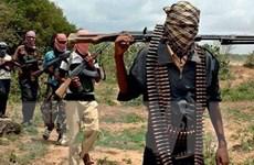 Hàng trăm phần tử Boko Haram đầu hàng quân đội Nigeria