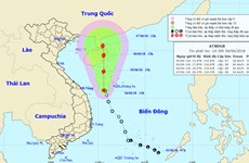 Áp thấp nhiệt đới đi về phía Tây, gây mưa lớn và biển động ở Trung Bộ