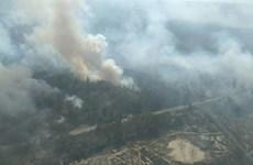 Cháy rừng dữ dội tại khu vực gần nhà máy điện hạt nhân Chernobyl