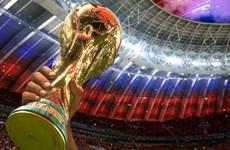 Đội tuyển nào dễ gây thất vọng nhất ở vòng chung kết World Cup 2018?