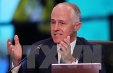 Australia: Tỷ lệ ủng hộ Thủ tướng M.Turnbull cao nhất trong 2 năm qua