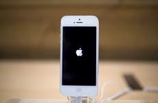 Apple bị phạt gần 7 triệu USD vì lỗi 53 biến iPhone thành cục gạch