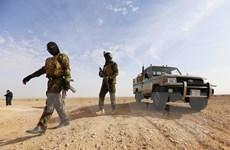 Thủ tướng Iraq ra lệnh mở chiến dịch săn lùng các phần tử IS