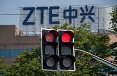 ZTE bổ nhiệm các giám đốc điều hành mới theo yêu cầu của Mỹ