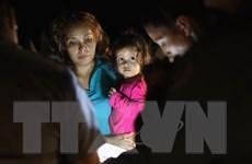 Chính giới Mỹ vẫn bất đồng về hạn chót đoàn tụ gia đình nhập cư