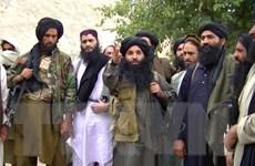 Taliban thông báo cuộc gặp trực tiếp đầu tiên với quan chức Mỹ
