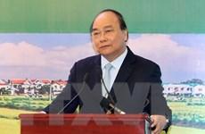 Đưa nông nghiệp Việt Nam vào top 15 nước phát triển nhất thế giới