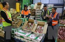 Xuất khẩu nông lâm thủy sản 7 tháng ước đạt 22,2 tỷ USD