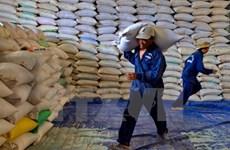 Thủ tướng chỉ đạo hỗ trợ tỉnh Thanh Hóa hơn 50.000 tấn gạo