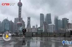 Bão Jongdari đổ bộ vào Thượng Hải, hàng trăm nghìn người phải sơ tán