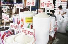 Xuất khẩu gạo của Campuchia tiếp tục giảm trong tháng 7