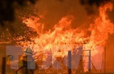 Cháy rừng đe dọa hàng nghìn gia đình tại thành phố Los Angeles