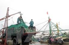 Bộ trưởng Nguyễn Xuân Cường kiểm tra phòng, chống bão tại Nam Định
