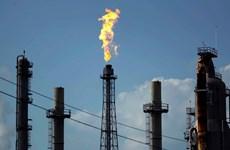 """Giá dầu """"nhích"""" nhẹ nhờ sự ổn định của thị trường toàn cầu"""