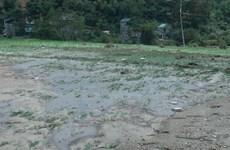 Mưa lũ kinh hoàng tàn phá huyện miền núi của tỉnh Sơn La