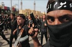 IS tái triển khai các nhóm khủng bố đến châu Âu, Trung Á và Nga