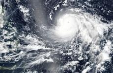 Người dân Philippines sẵn sàng ứng phó với siêu bão Mangkhut