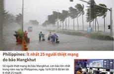 Ít nhất 25 người thiệt mạng do bão Mangkhut đổ bộ vào Philippines