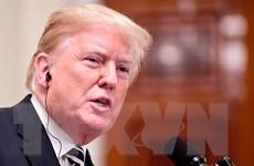 Ông Trump khẳng định không vội vàng ký thỏa thuận với Triều Tiên