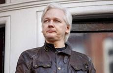 Trang WikiLeaks có tổng biên tập mới thay cho Julian Assange