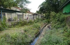 Bình Định: Cô, trò đeo khẩu trang trong giờ học vì ô nhiễm nước thải