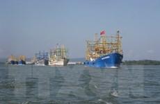 Quảng Nam: Đưa 43 ngư dân gặp nạn trên biển vào đất liền an toàn