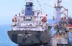 Thanh Hóa đẩy mạnh phát triển đồng bộ 5 trụ cột kinh tế biển